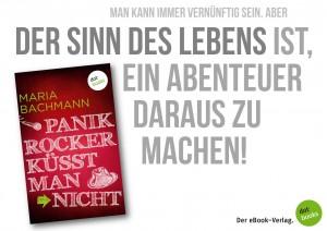 Bachmann Panikrocker 3